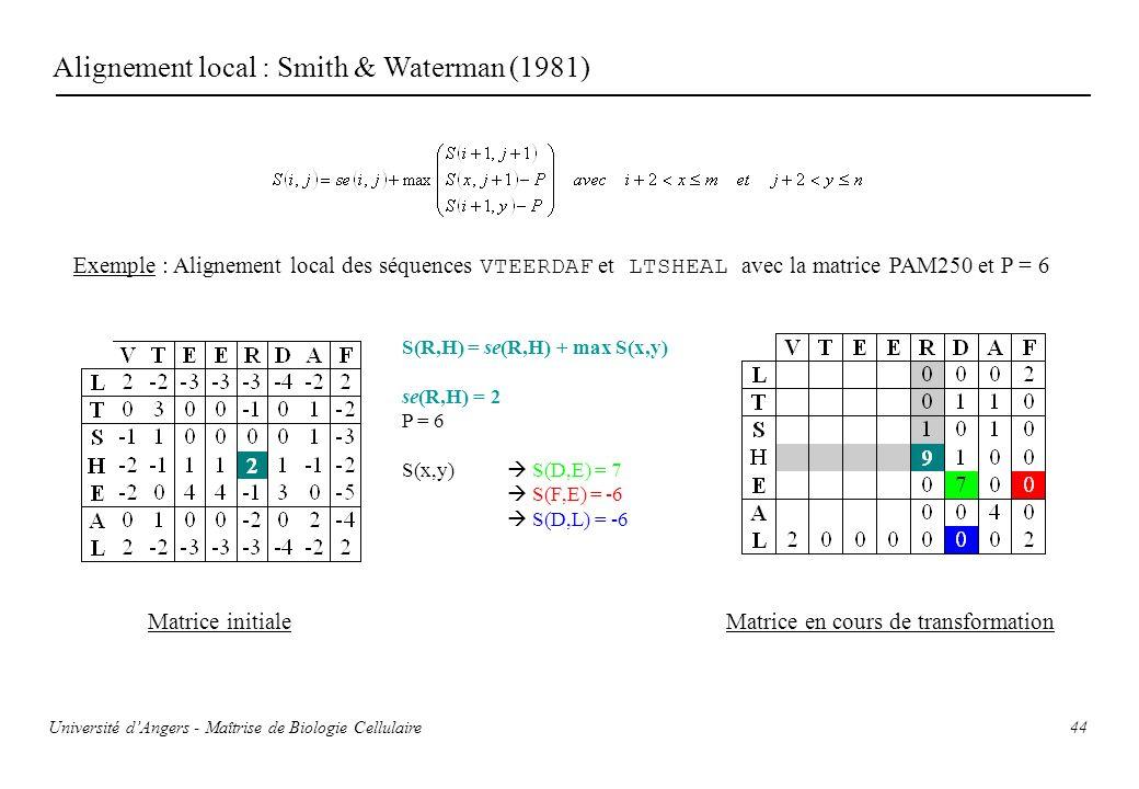 44 Alignement local : Smith & Waterman (1981) Exemple : Alignement local des séquences VTEERDAF et LTSHEAL avec la matrice PAM250 et P = 6 Matrice ini
