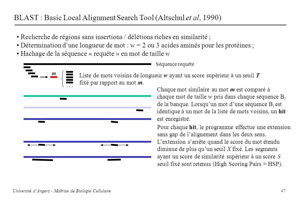 47 BLAST : Basic Local Alignment Search Tool (Altschul et al, 1990) Recherche de régions sans insertions / délétions riches en similarité ; Déterminat