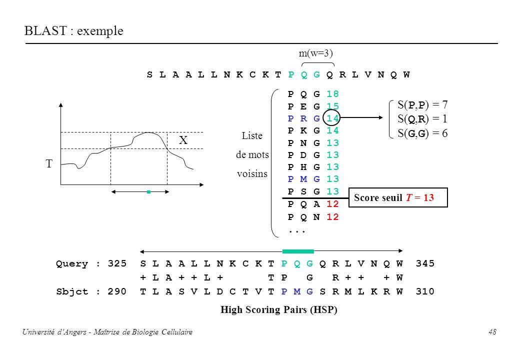 48 BLAST : exemple S L A A L L N K C K T P Q G Q R L V N Q W m(w=3) P Q G 18 P E G 15 P R G 14 P K G 14 P N G 13 P D G 13 P H G 13 P M G 13 P S G 13 P