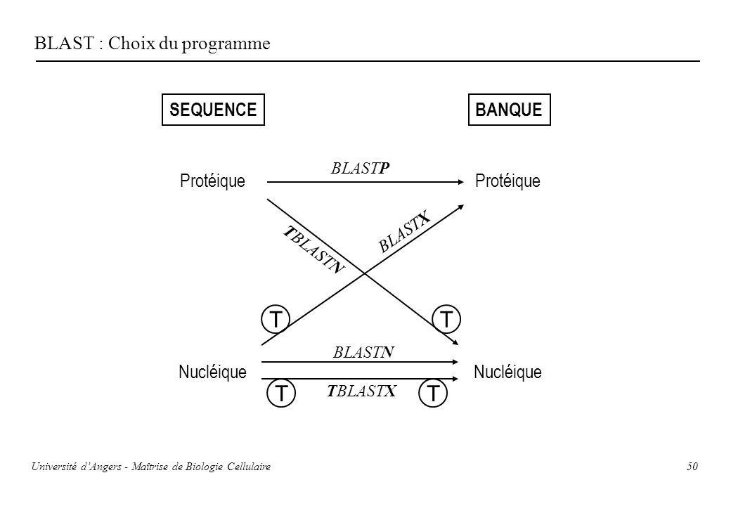 50 BLAST : Choix du programme SEQUENCEBANQUE Protéique Nucléique TT TT BLASTP BLASTN TBLASTX TBLASTN BLASTX Université dAngers - Maîtrise de Biologie