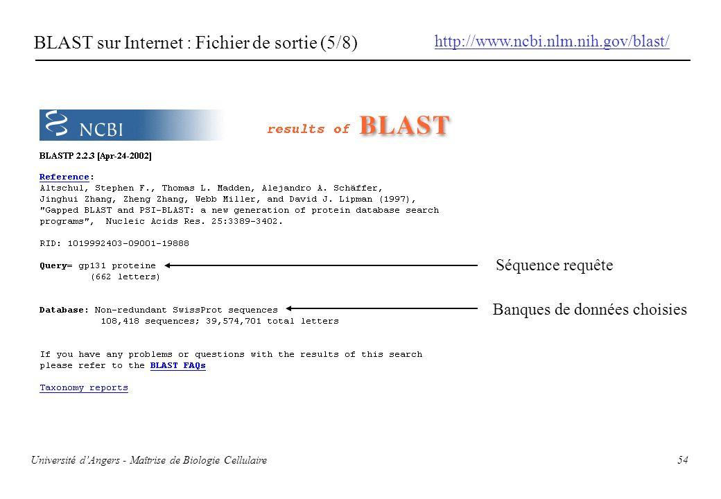 54 BLAST sur Internet : Fichier de sortie (5/8) Séquence requête Banques de données choisies http://www.ncbi.nlm.nih.gov/blast/ Université dAngers - M