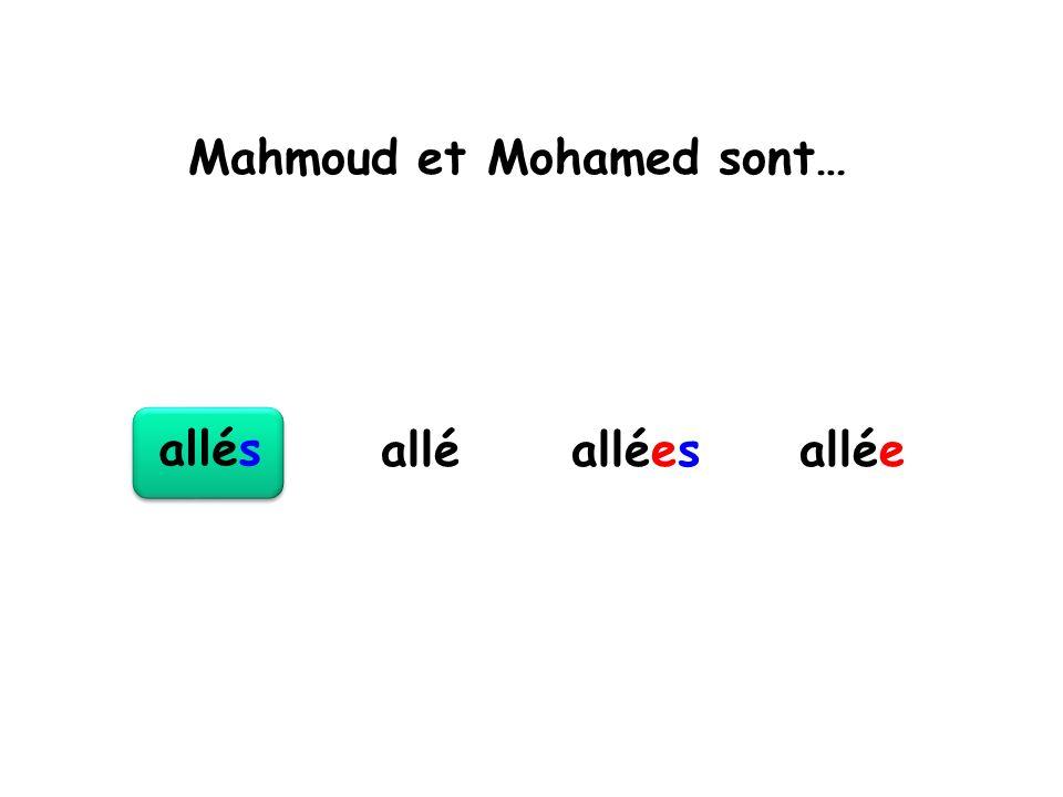 Mahmoud et Mohamed sont… allés alléesalléeallé