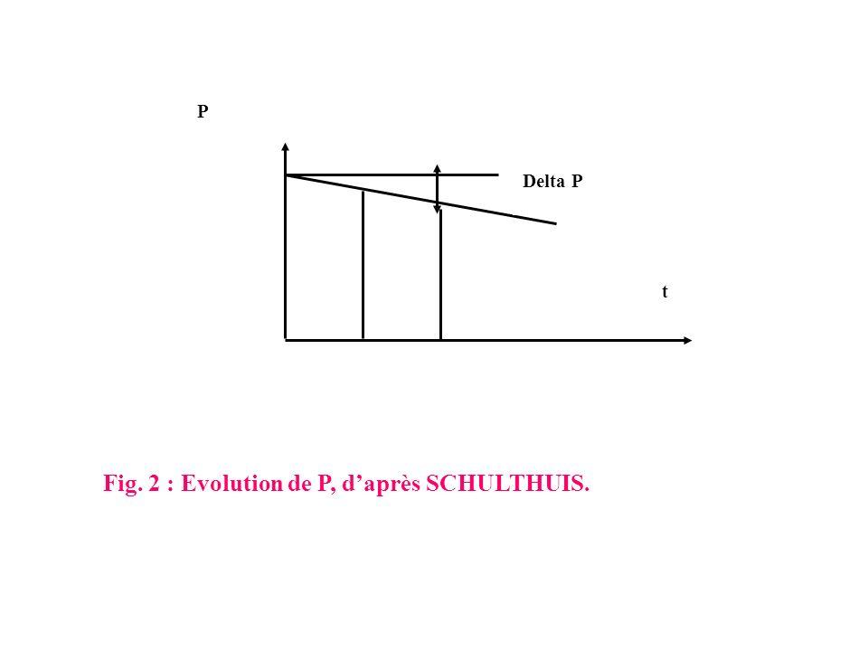 t P Delta P Fig. 2 : Evolution de P, daprès SCHULTHUIS.
