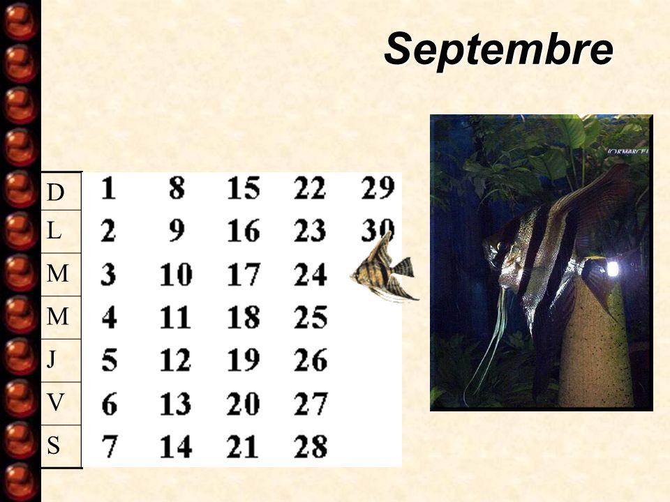 Septembre D L M M J V S