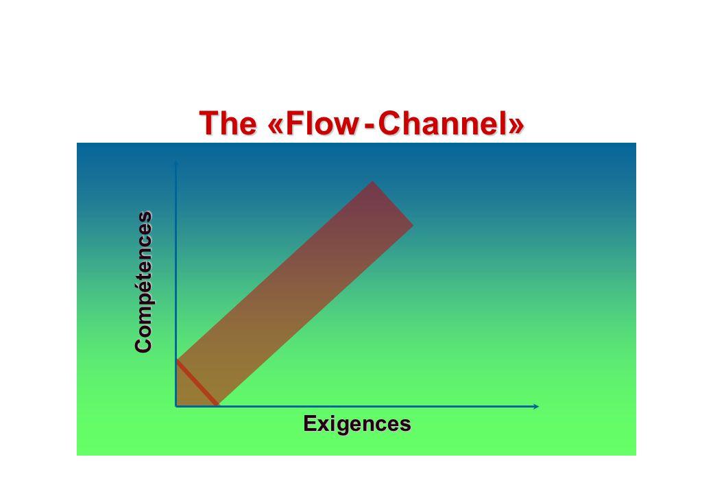 © J-P. Egger, H. Müller Compétences Exigences The «Flow - Channel»