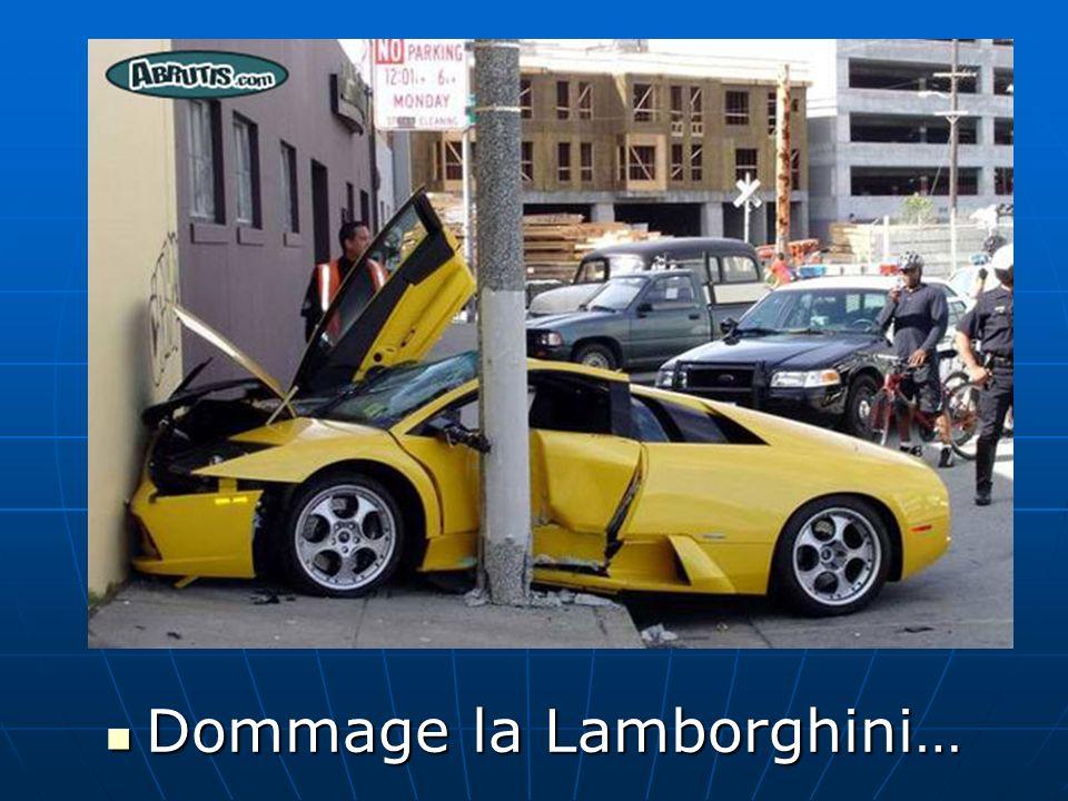 Dommage la Lamborghini… Dommage la Lamborghini…