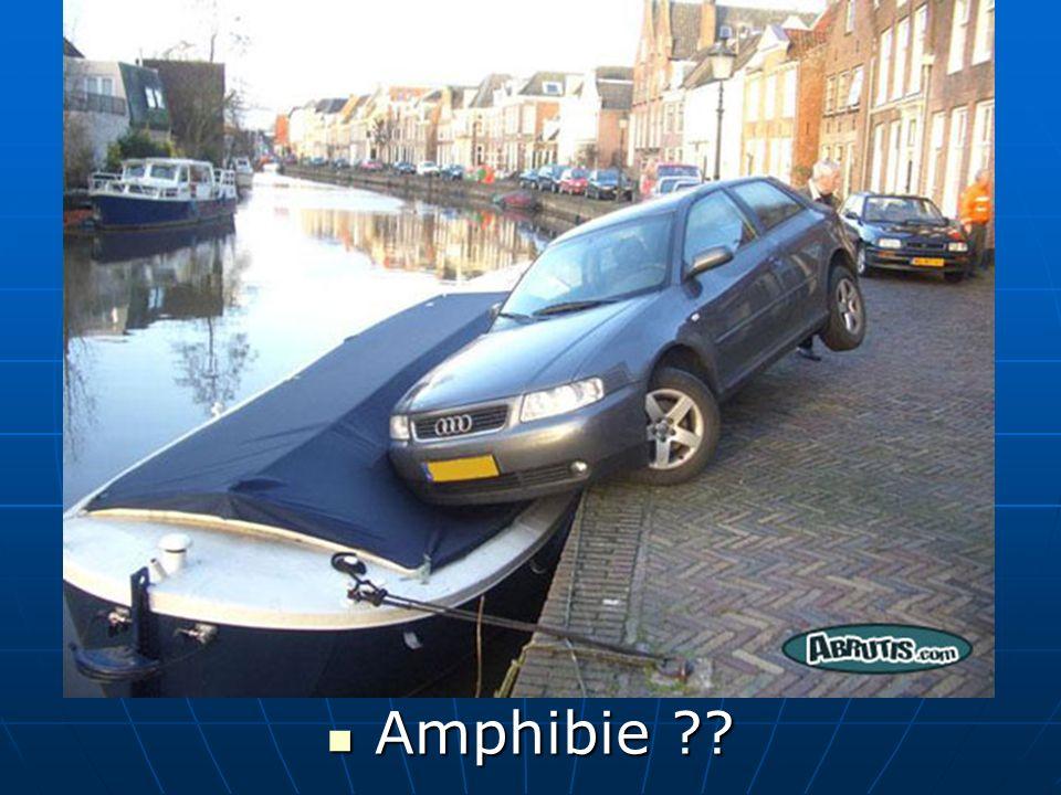 Amphibie Amphibie