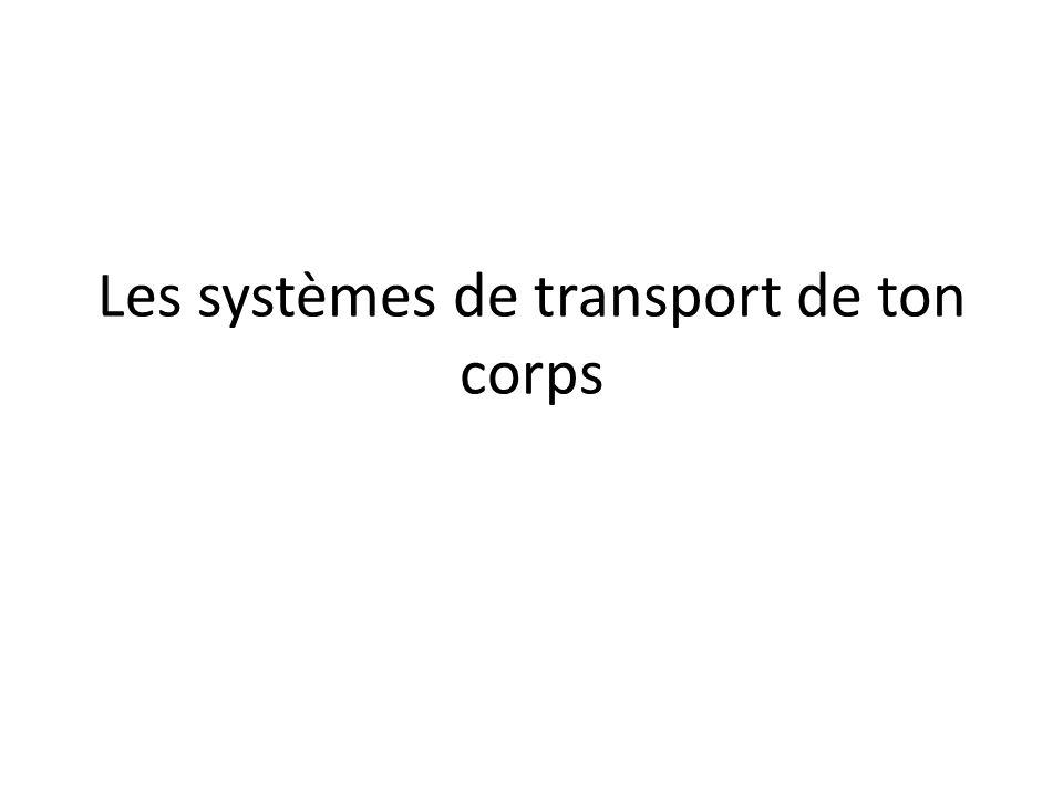 Les systèmes de transport de ton corps