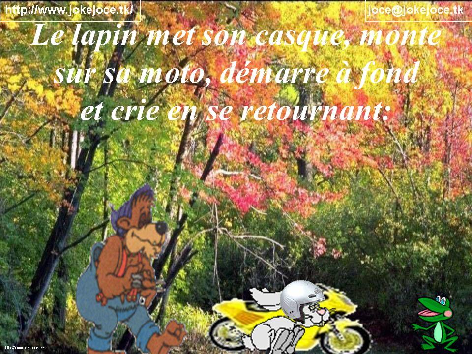 Le lapin met son casque, monte sur sa moto, démarre à fond et crie en se retournant: