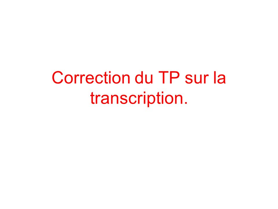 Correction du TP sur la transcription.