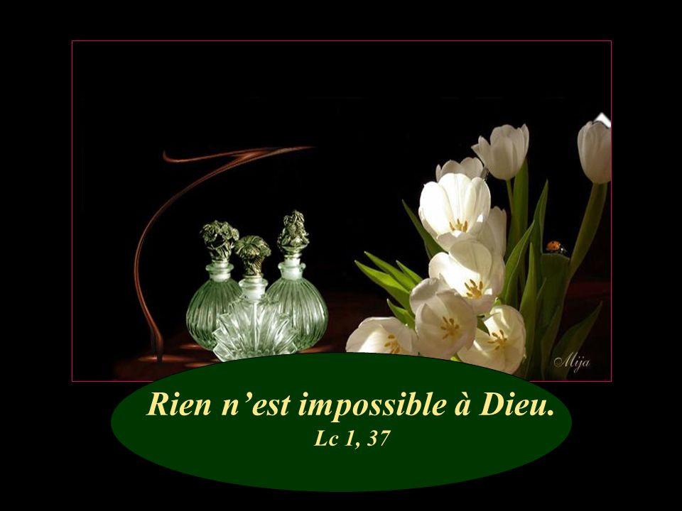 Alors Jésus fixa sur lui son regard et laima. Mc 10, 21