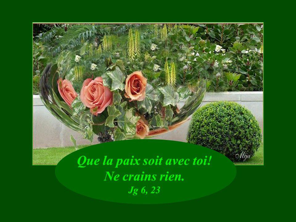 Il réconforte ceux qui ont perdu lespérance. Ecc 17, 24