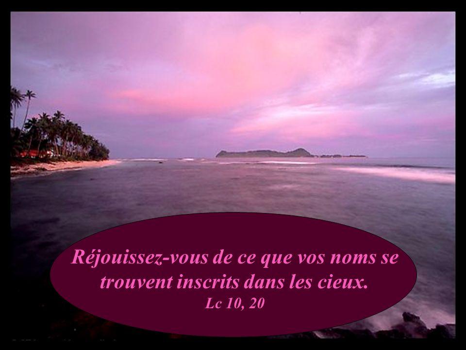 Que la paix soit avec toi! Ne crains rien. Jg 6, 23