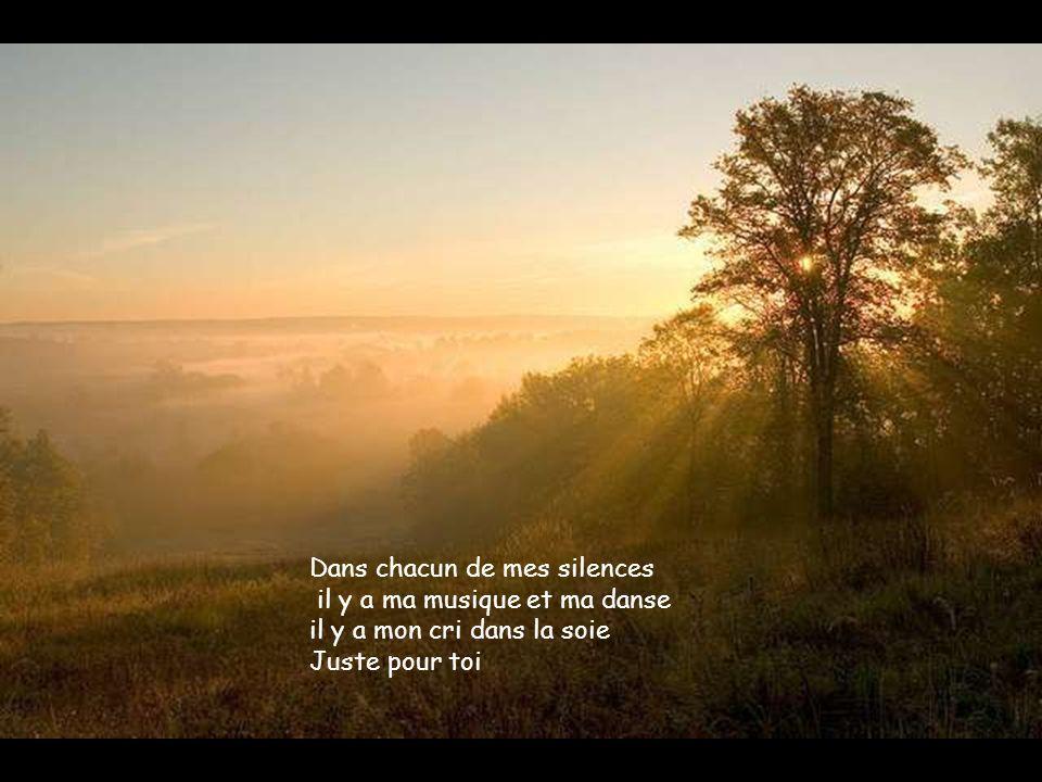 Dans chacun de mes silences il y a ma musique et ma danse il y a mon cri dans la soie Juste pour toi
