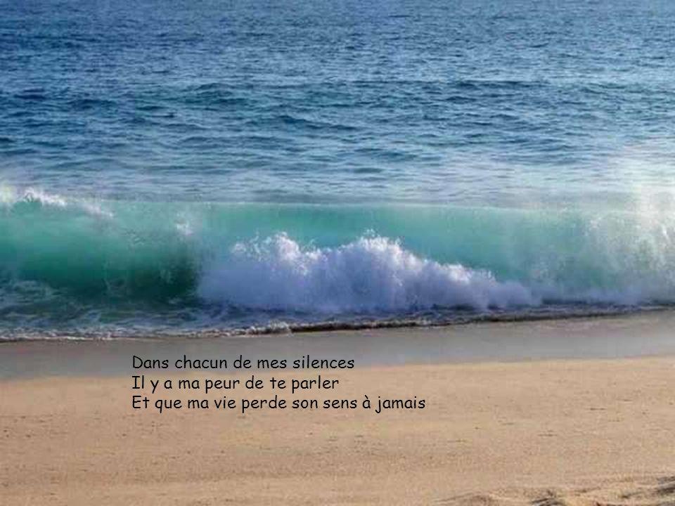 Dans chacun de mes silences Il y a ma peur de te parler Et que ma vie perde son sens à jamais
