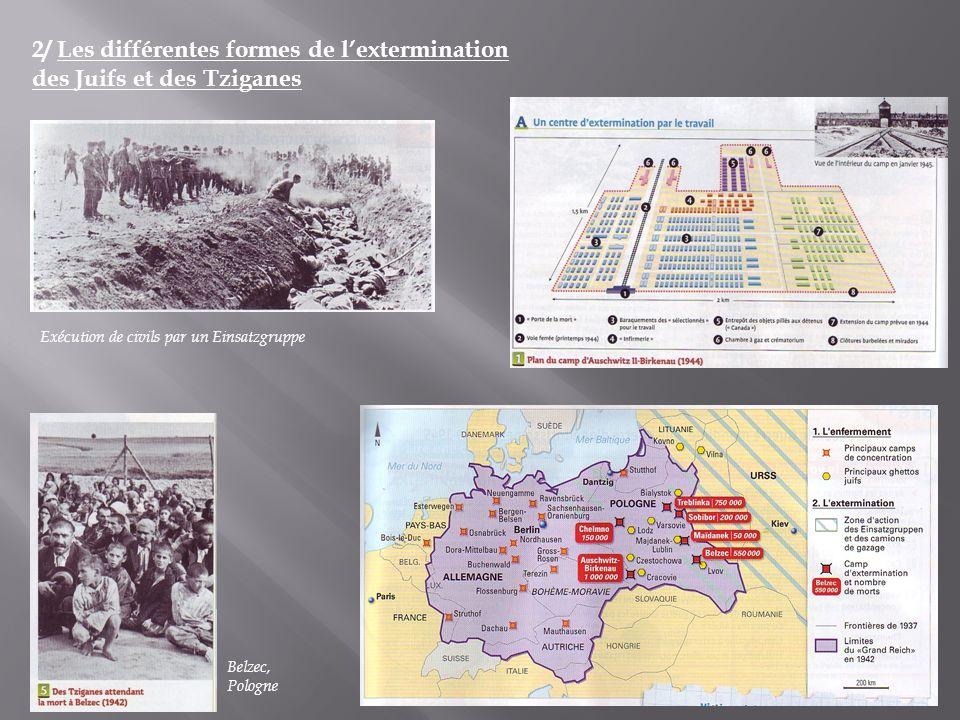 2/ Les différentes formes de lextermination des Juifs et des Tziganes Exécution de civils par un Einsatzgruppe Belzec, Pologne