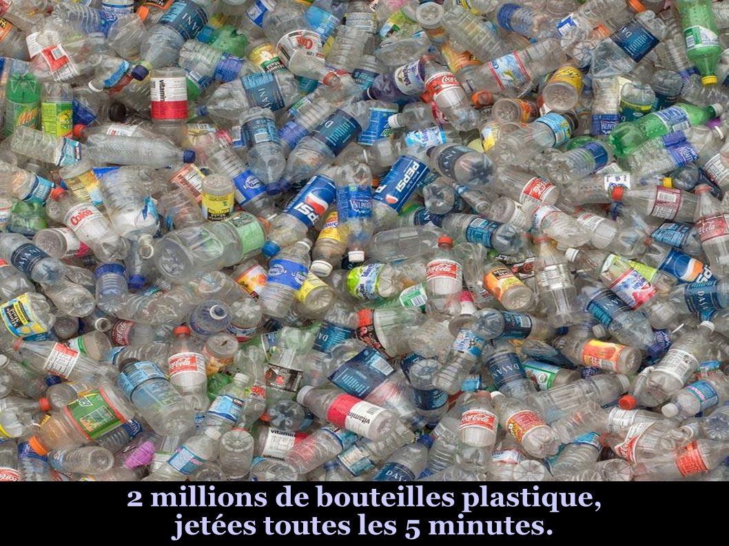2 millions de bouteilles plastique, jetées toutes les 5 minutes.