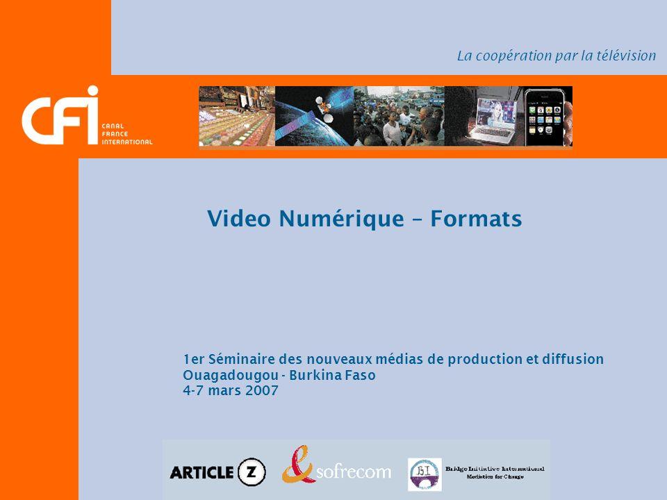 Video Numérique – Formats 1er Séminaire des nouveaux médias de production et diffusion Ouagadougou - Burkina Faso 4-7 mars 2007 La coopération par la