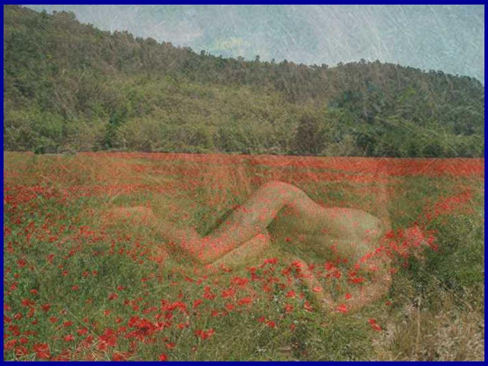 Elle dormait, à moitié nue Dans la lumière de l été Au beau milieu d un champ de blé.