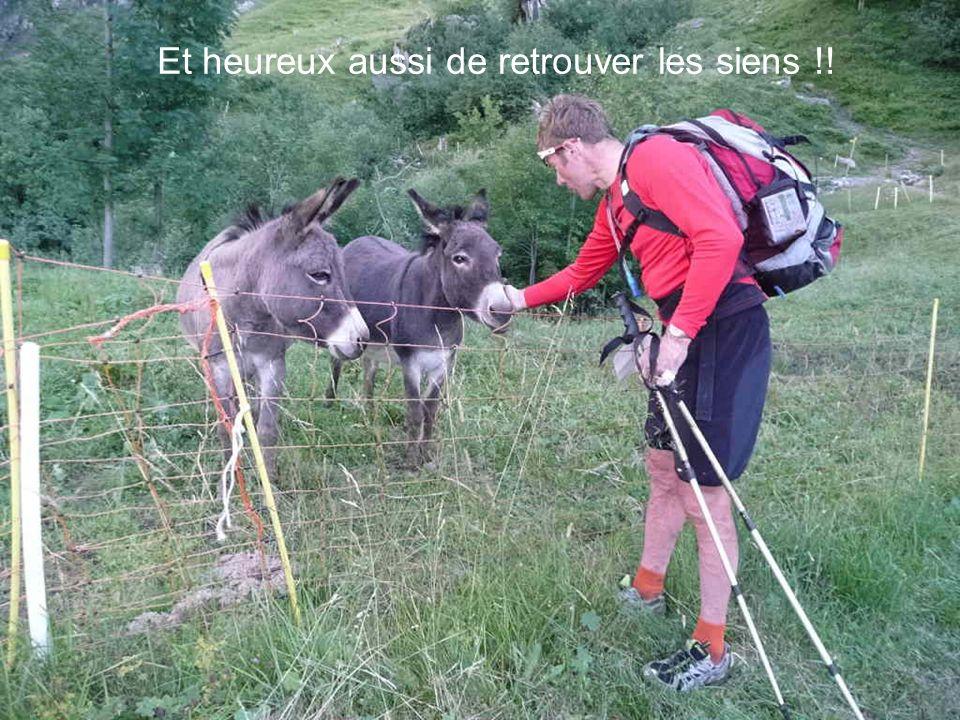 Bientôt de retour au camp de base, Hugues est content de retrouver quelques sapins