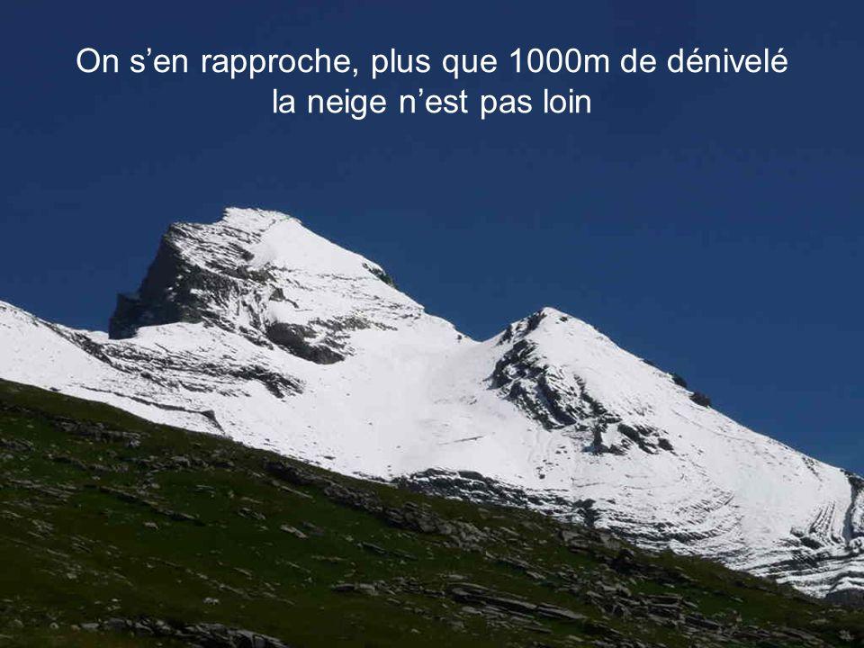 Dabord contemplatif !! Face au glacier du Ruan