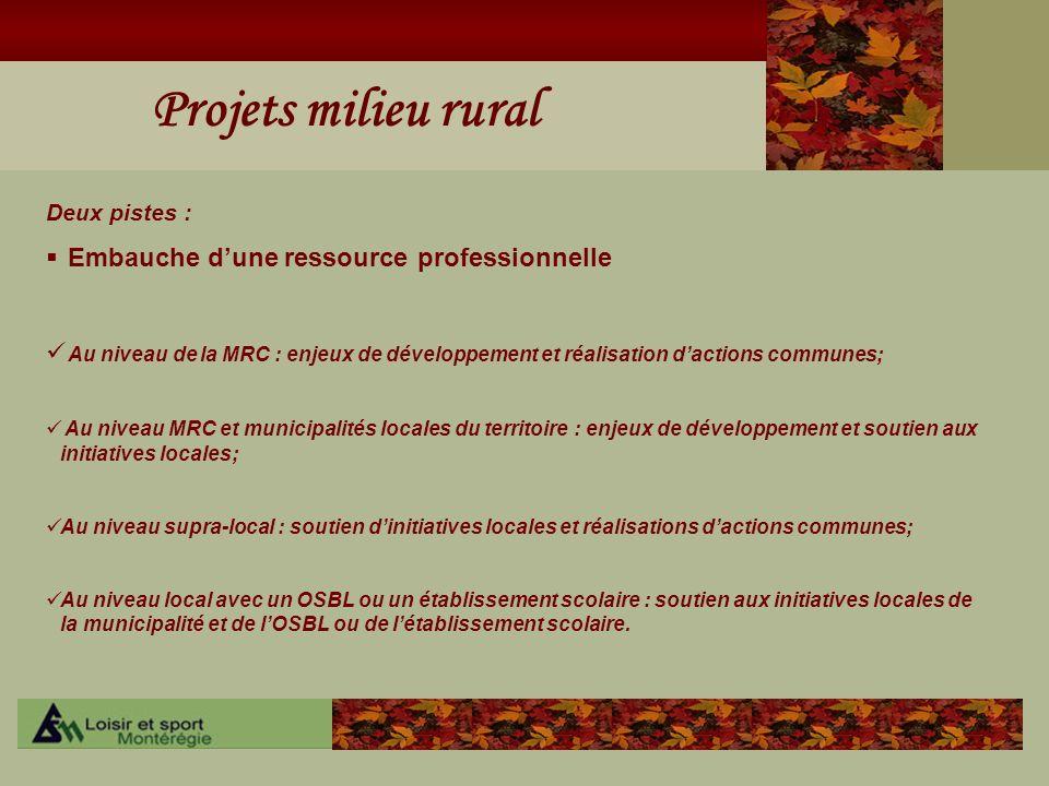 Projets milieu rural Deux pistes : Embauche dune ressource professionnelle Au niveau de la MRC : enjeux de développement et réalisation dactions commu