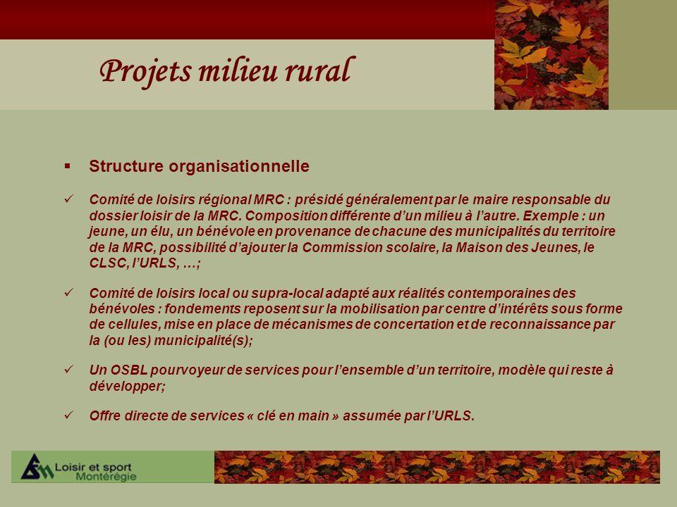 Projets milieu rural Structure organisationnelle Comité de loisirs régional MRC : présidé généralement par le maire responsable du dossier loisir de l