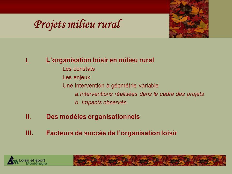 Projets milieu rural I. Lorganisation loisir en milieu rural Les constats Les enjeux Une intervention à géométrie variable a.Interventions réalisées d