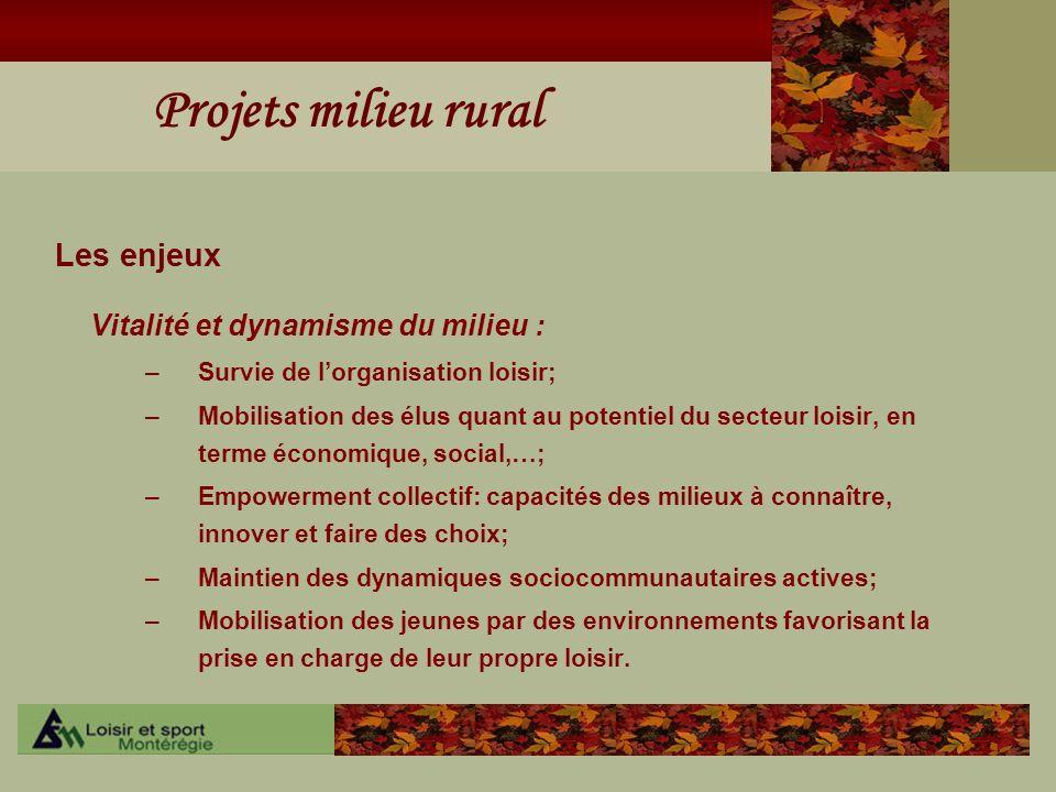 Projets milieu rural Les enjeux Vitalité et dynamisme du milieu : –Survie de lorganisation loisir; –Mobilisation des élus quant au potentiel du secteu