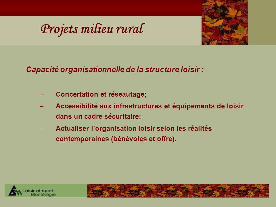 Projets milieu rural Capacité organisationnelle de la structure loisir : –Concertation et réseautage; –Accessibilité aux infrastructures et équipement