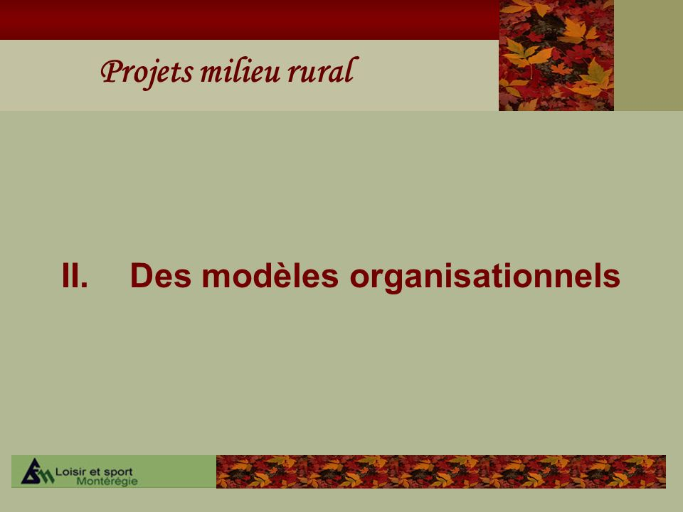 Projets milieu rural II. Des modèles organisationnels