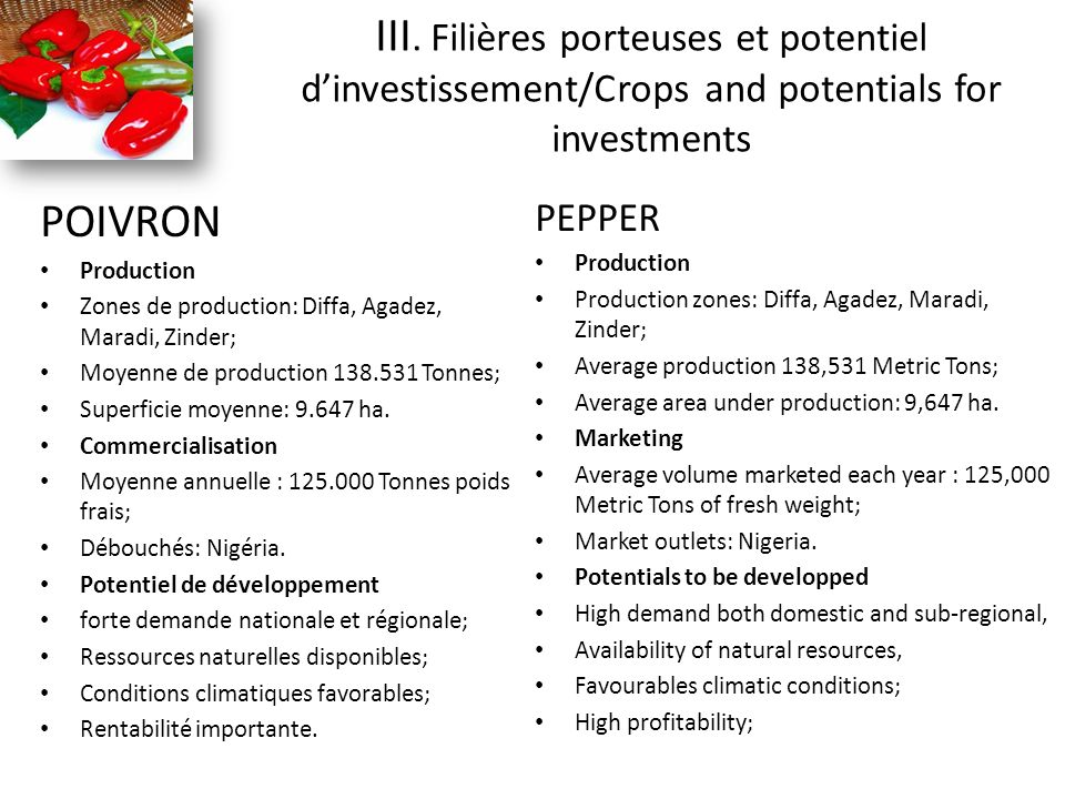 POIVRON Production Zones de production: Diffa, Agadez, Maradi, Zinder; Moyenne de production 138.531 Tonnes; Superficie moyenne: 9.647 ha.