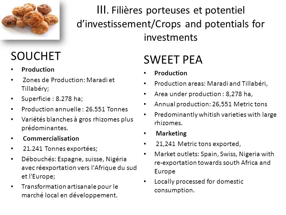 SOUCHET Production Zones de Production: Maradi et Tillabéry; Superficie : 8.278 ha; Production annuelle : 26.551 Tonnes Variétés blanches à gros rhizo