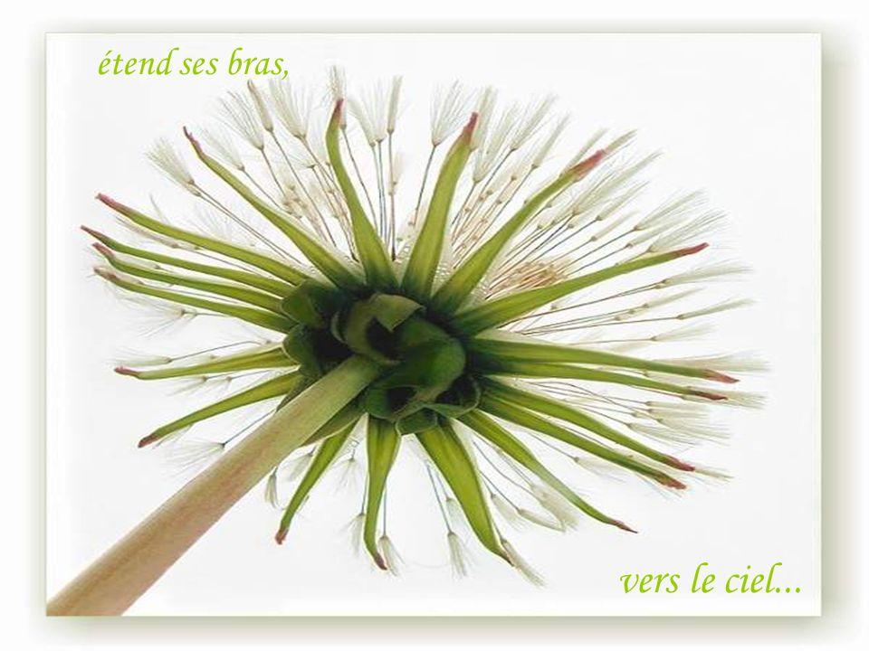 Pour la Nature, pour la Vie ! F I N