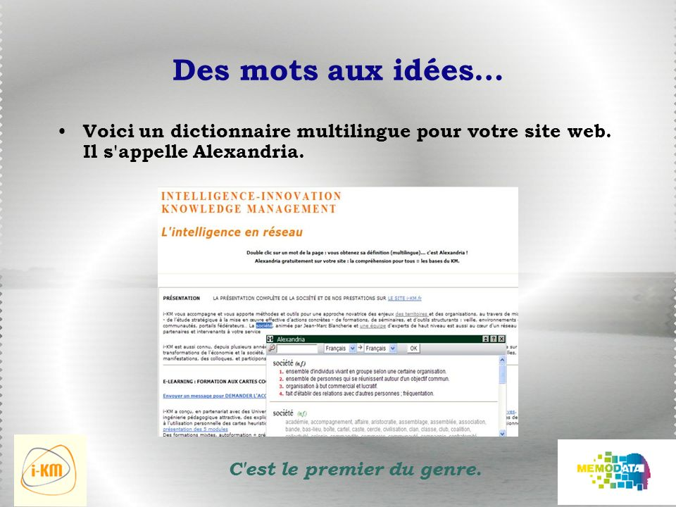 Des mots aux idées… Voici un dictionnaire multilingue pour votre site web.