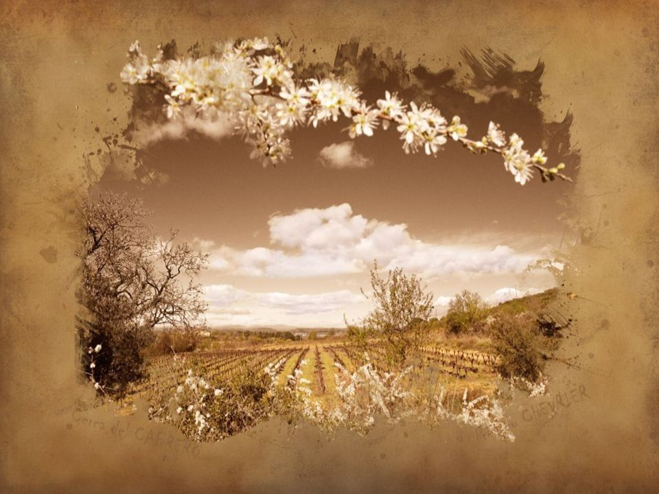 Je me dois de laisser une trace sur mon chemin… Mi deber es dejar un rastro en mi camino… I must leave a track on my way … Prix photo 2008
