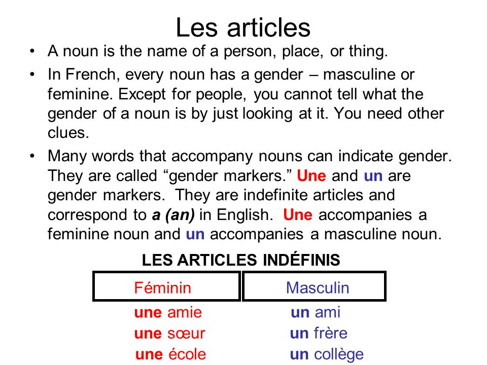 Les articles A noun is the name of a person, place, or thing. In French, every noun has a gender – masculine or feminine. Except for people, you canno
