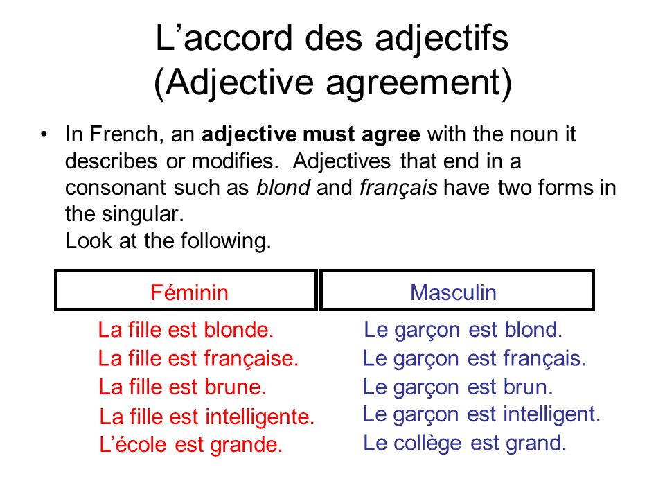 Adjectives that end in e, such as énergique and sympathique, are both feminine and masculine.