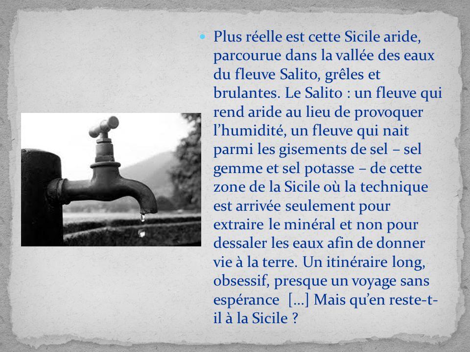 Plus réelle est cette Sicile aride, parcourue dans la vallée des eaux du fleuve Salito, grêles et brulantes. Le Salito : un fleuve qui rend aride au l