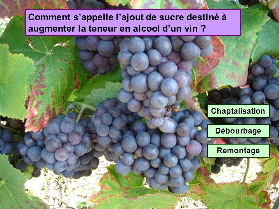 Comment sappelle la collection détiquettes de vin ? Glycophilie Oenographilie Vitolphilie