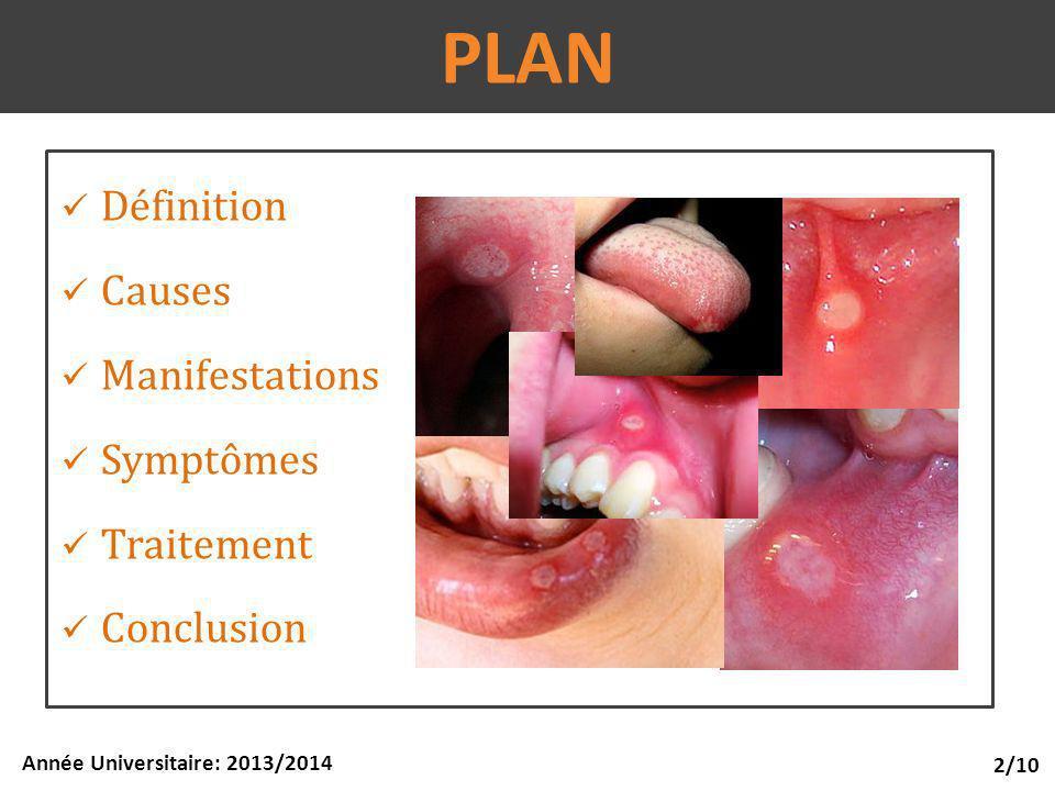 PLAN Définition Causes Manifestations Symptômes Traitement Conclusion 2/10 Année Universitaire: 2013/2014