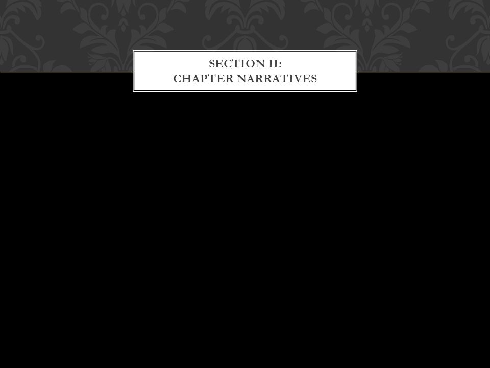 SECTION II: CHAPTER NARRATIVES