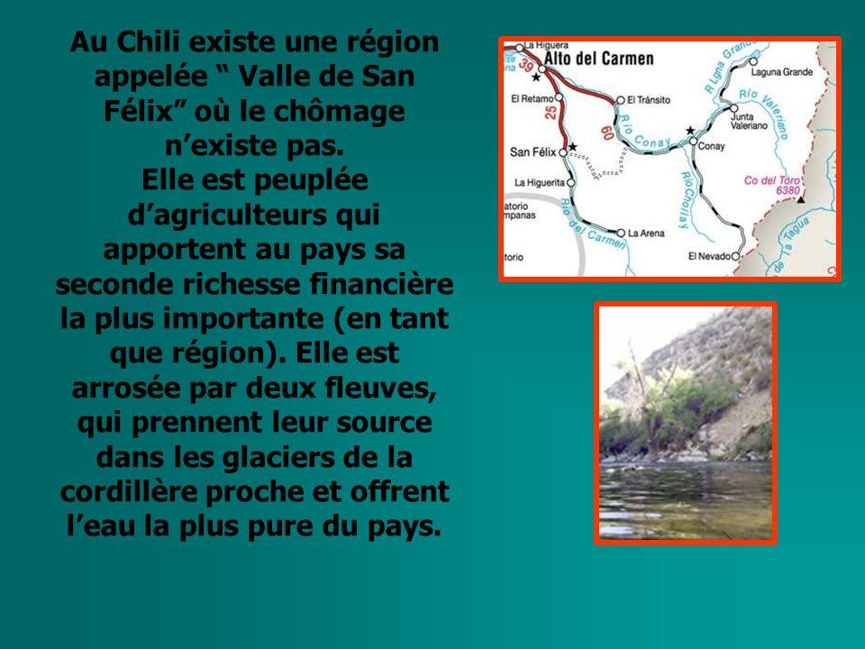 Au Chili existe une région appelée Valle de San Félix où le chômage nexiste pas.