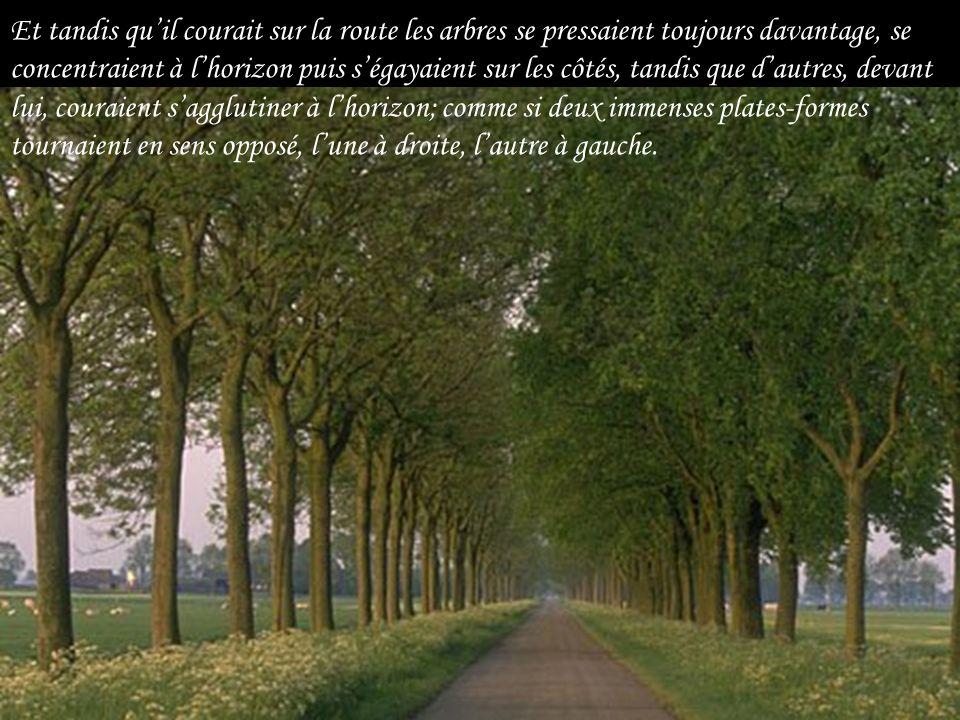 Le paysage. Pas de maisons, pas de fermes, pas de postes dessence comme sur les routes normales. La campagne déserte. Des champs couverts de brume et