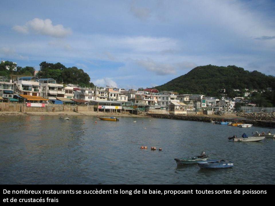 De nombreux restaurants se succèdent le long de la baie, proposant toutes sortes de poissons et de crustacés frais