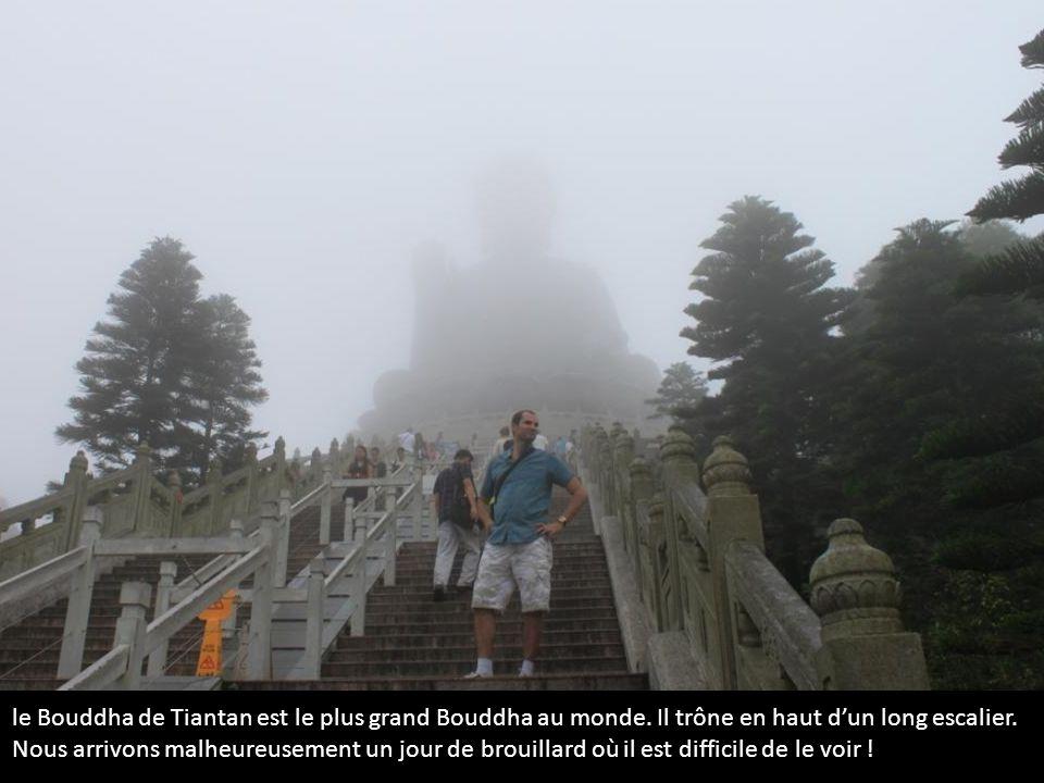 le Bouddha de Tiantan est le plus grand Bouddha au monde. Il trône en haut dun long escalier. Nous arrivons malheureusement un jour de brouillard où i