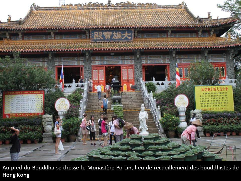 Au pied du Bouddha se dresse le Monastère Po Lin, lieu de recueillement des bouddhistes de Hong Kong