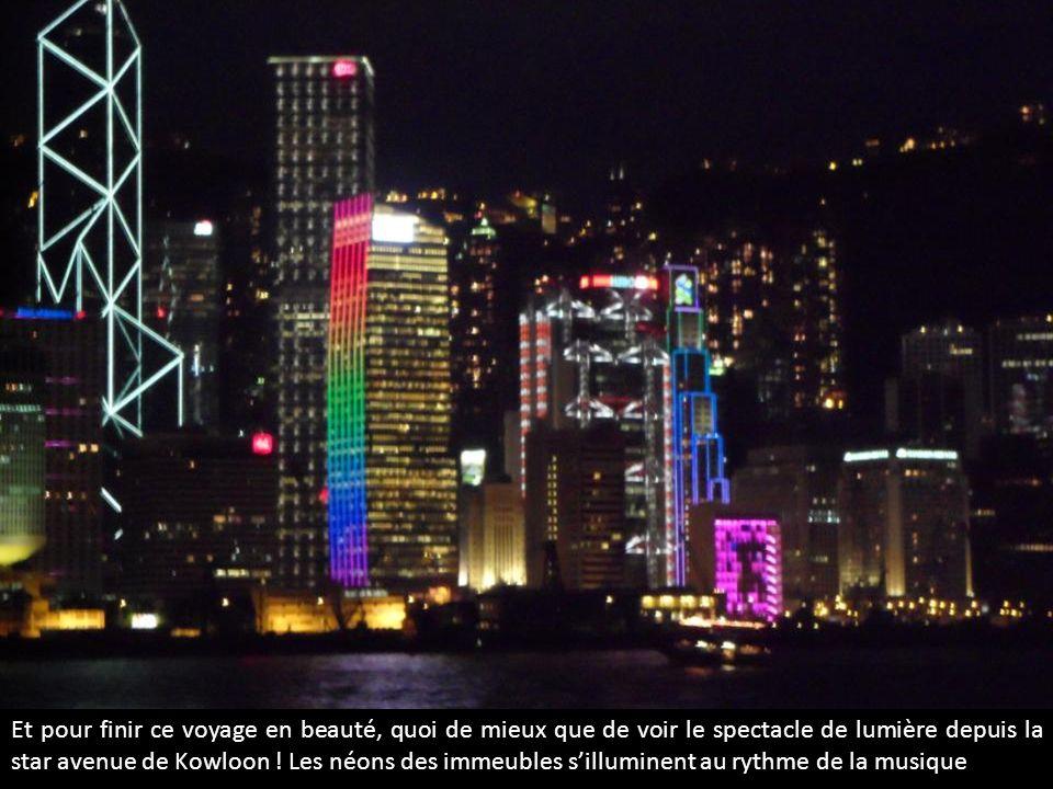 Et pour finir ce voyage en beauté, quoi de mieux que de voir le spectacle de lumière depuis la star avenue de Kowloon ! Les néons des immeubles sillum