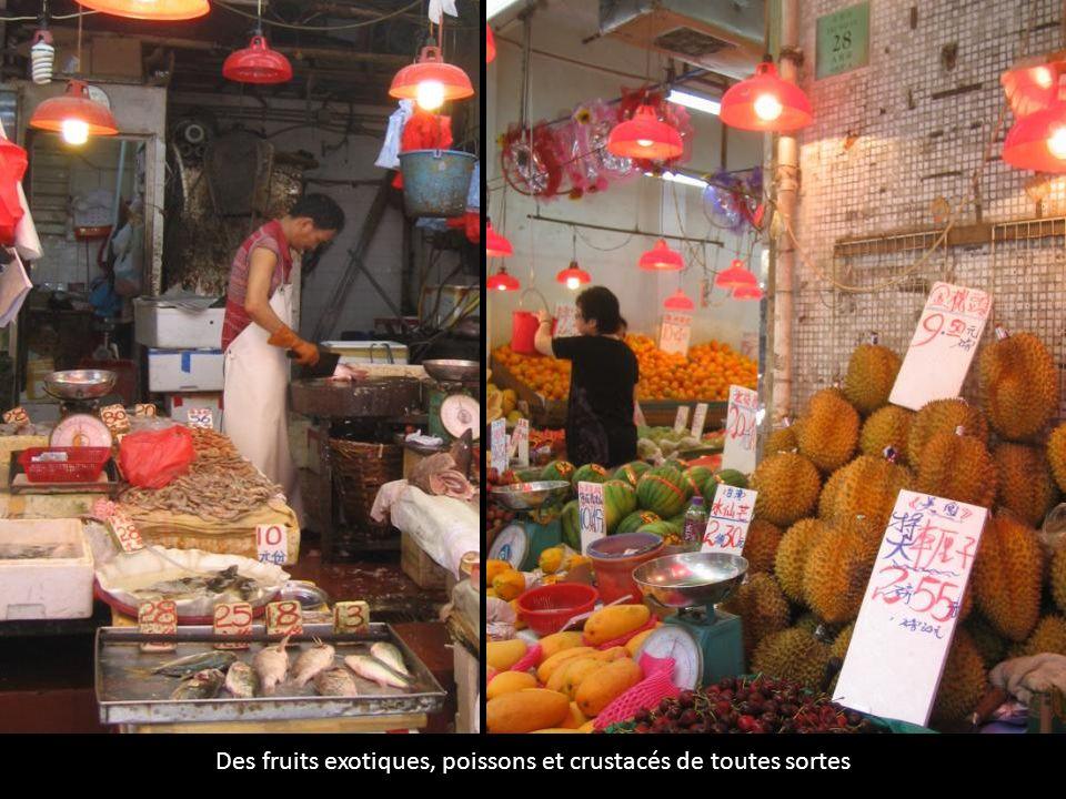 Des fruits exotiques, poissons et crustacés de toutes sortes