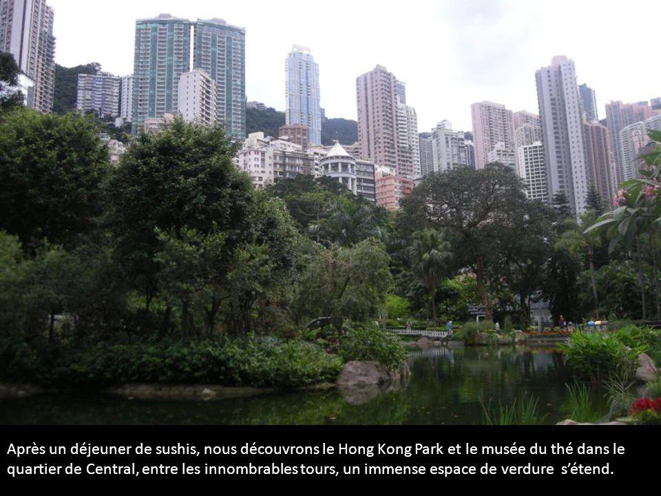 Après un déjeuner de sushis, nous découvrons le Hong Kong Park et le musée du thé dans le quartier de Central, entre les innombrables tours, un immens